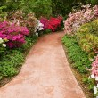 Walkway through flower garden — Stock Photo