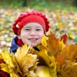 Little girl with autumn leaves in the park - Stock Photo