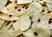 Background of bay leaves and black peppercorns — Stock Photo