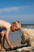 Boy playing with dog on beach — Stock Photo