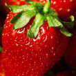 Strawberry&#039;s Close Up - Stock Photo