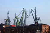 Big cranes — Stock Photo