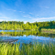 Tranquil lake in the forest — Stock Photo