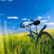 Bike on the field — Stock Photo