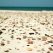 Stones on the beach — Stock Photo
