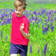Running through the meadow! — Stock Photo