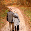 Couple walk — Foto Stock