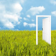 Royalty-Free Stock Photo: Door to the new world