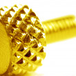 Stock Photo: Screw