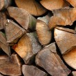 Woodpiles - Stock Photo