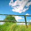 Stock Photo: Rural scene
