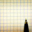 Pen on empy piece of paper. — Stockfoto #3495359