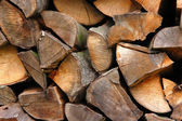 Woodpiles — Stock Photo