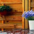 Stock Photo: Outdoor design