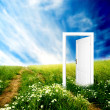 Door to new world — Stock Photo #3500564