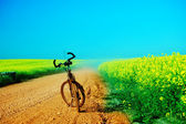 Bicycle trip at summer — Fotografia Stock