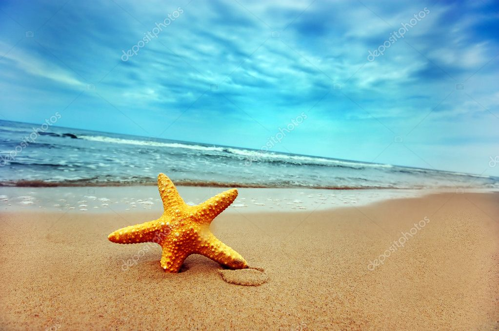 Starfish on the tropical beach — Stock Photo #3500668