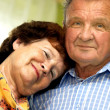 Happy smiled senior couple — Stock Photo #3510220
