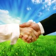 Business handshake on nature background — Foto Stock