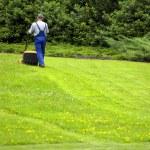 Gardener mowing — Stock Photo
