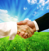 Business handshake on nature background — Stock Photo