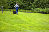 Gardener mowing — Stock Photo