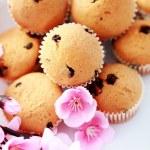 Muffins — Stock Photo #2765923