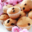 Royalty-Free Stock Photo: Muffins
