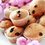 Muffins — Stock Photo #2765966