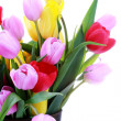 Vase of tulips — Stock Photo #2971032