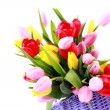 Basket full of tulips — Stock Photo #2980688