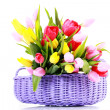 Basket full of tulips — Stock Photo #2980720