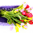 Basket full of tulips — Stock Photo #2980732