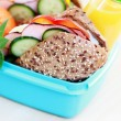 Lunch box — Stock Photo #2981573
