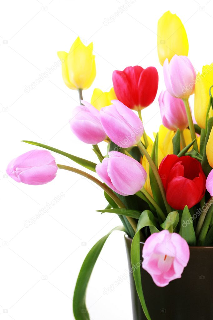 Vase full of colorful tulips - flowers and plants — Stock Photo #2981212