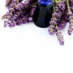 Lavender essential oil — Stock Photo #3423979