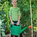 Gardener — Stock Photo #3587113