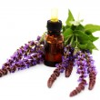 Sage essential oil — Stock Photo #3773561