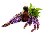 Sage essential oil — Stock Photo