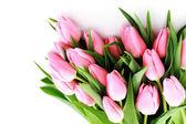 白色背景-花上可爱的粉色郁金香花束 — 图库照片