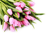 Bouquet of lovely pink tulips on white background - flowers — Stock Photo