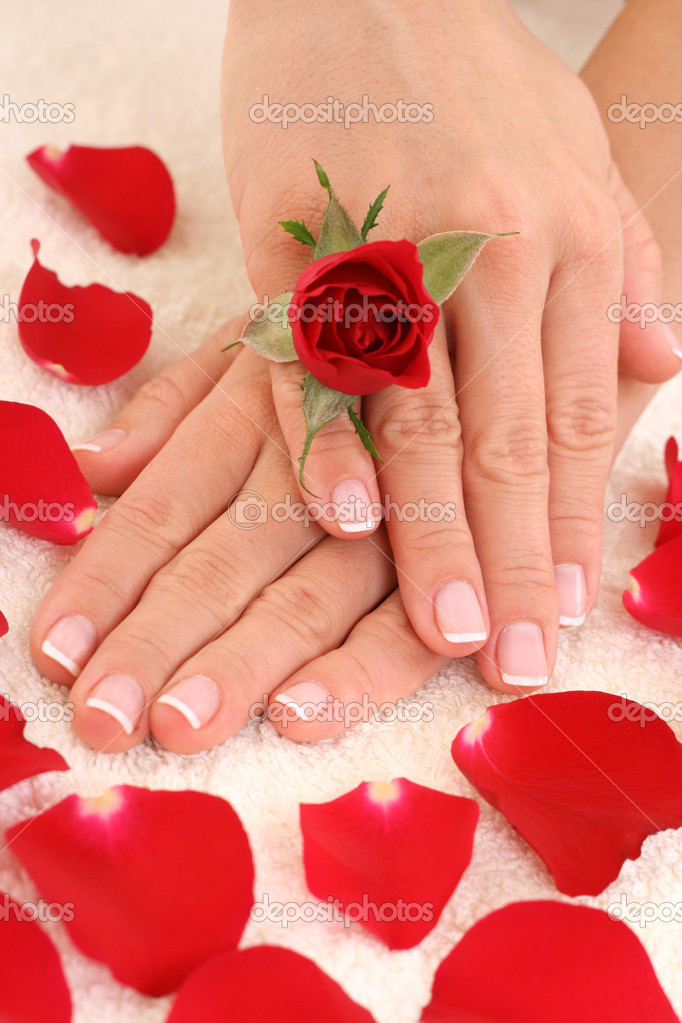 Beautiful hands with french manicure — Stock Photo #4449751