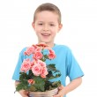 Boy with potted flower — Stock Photo #4468875