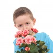 Boy with potted flower — Stock Photo #4468881