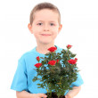 Boy with potted flower — Stock Photo #4468924