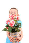 Boy with potted flower — Stock Photo