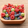 Bowl of berry fruits — Stock Photo