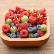 Bowl of berry fruits — Stock Photo #4480191