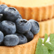 Blueberry pie — Stock Photo