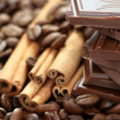 Chocolate coffee and cinnamon — Stock Photo #4494829